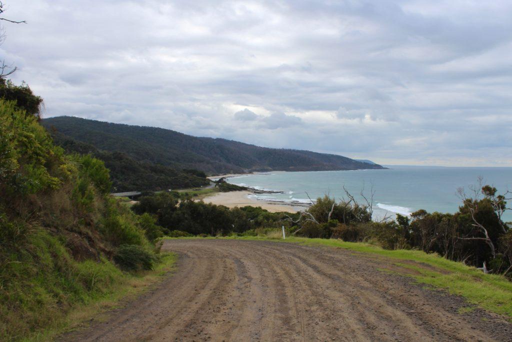 the trail of the kennett river koala walk
