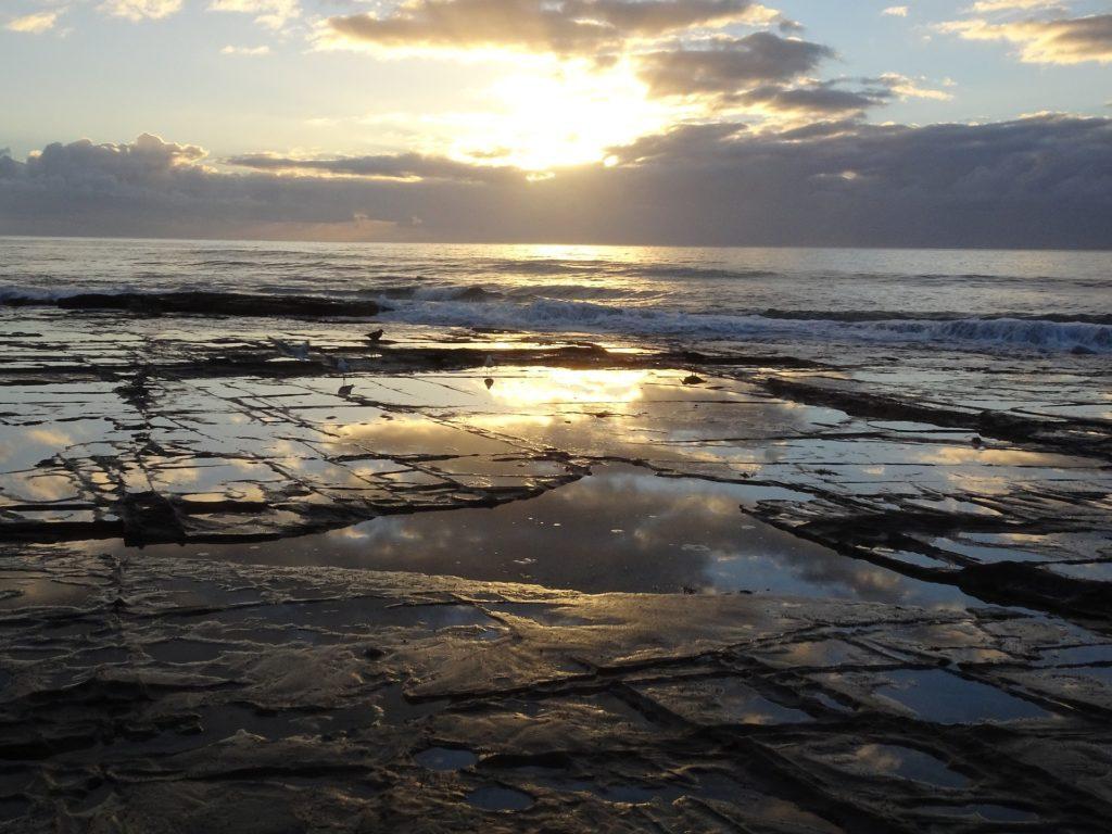 shelly beach lorne australia