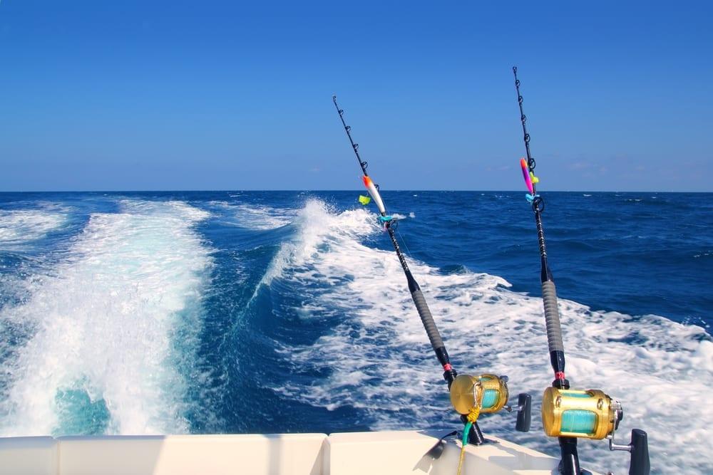apollo bay deep sea fishing