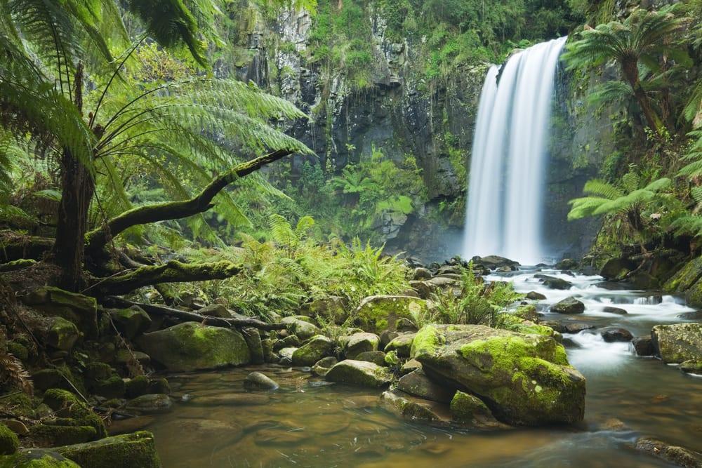 Hopetoun Falls, Great Otway NP, Victoria,