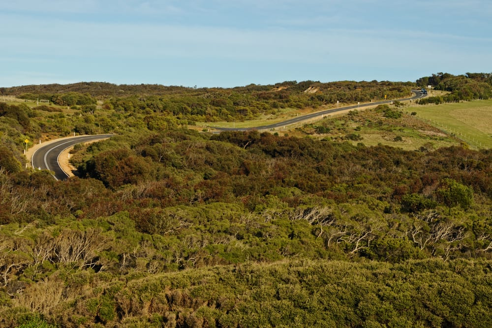 Road to Bells Beach