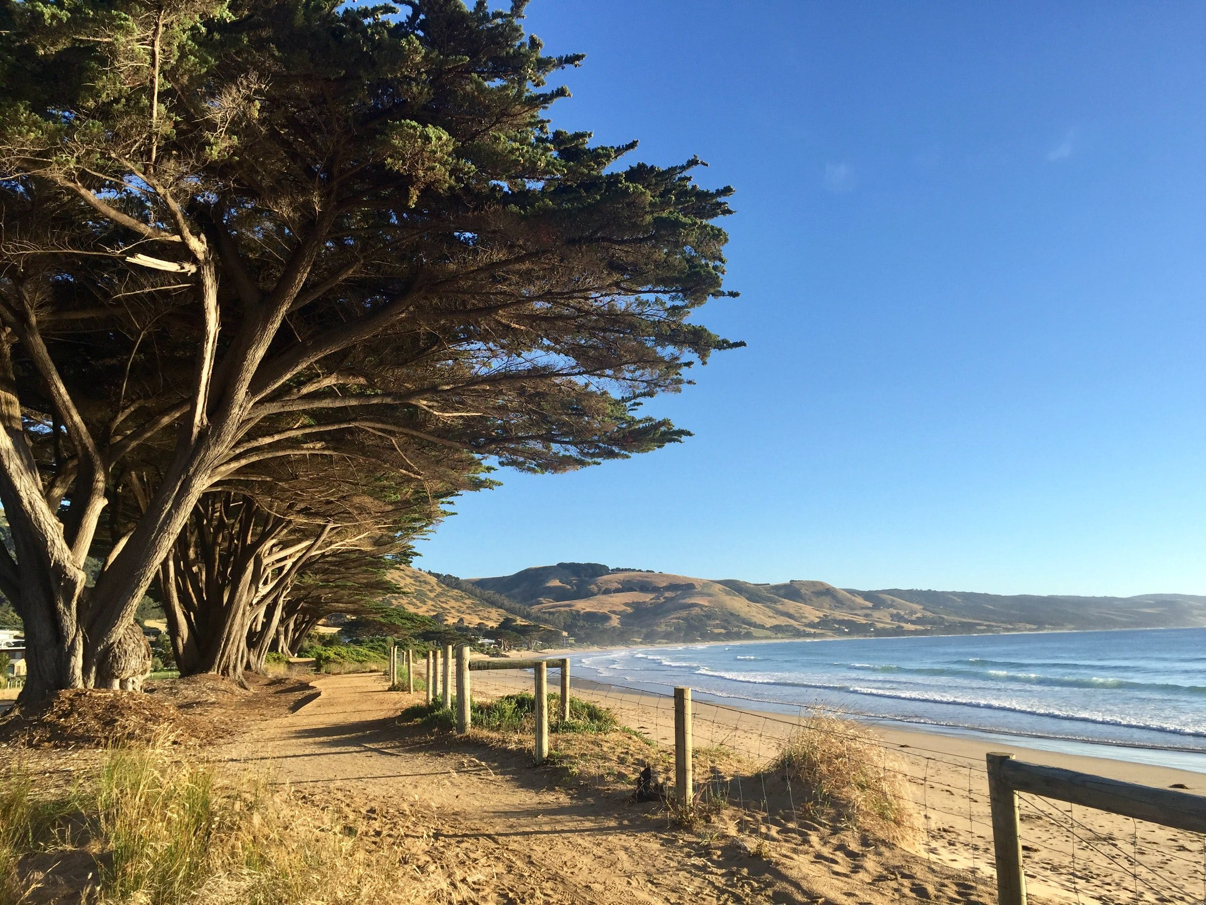 The Best Apollo Bay Accommodation